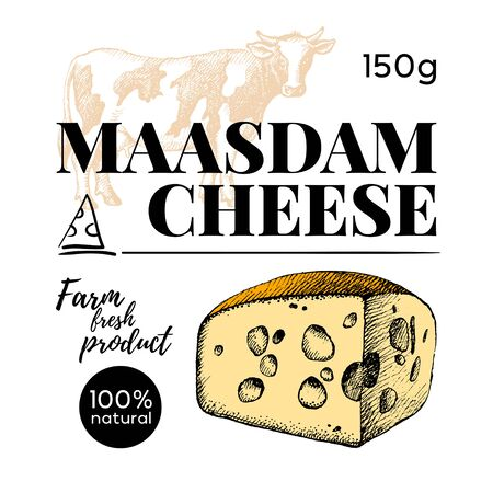 Hand drawn sketch cheese banner set. Vector illustration of natural milk foods