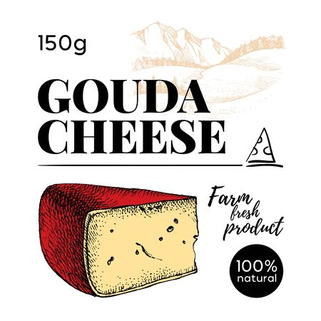 Hand drawn sketch Gouda cheese background. Vector illustration of natural milk foods Illustration