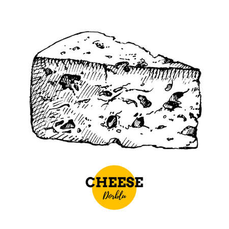 Hand drawn sketch cheese dorblu background. Vector illustration of natural milk foods