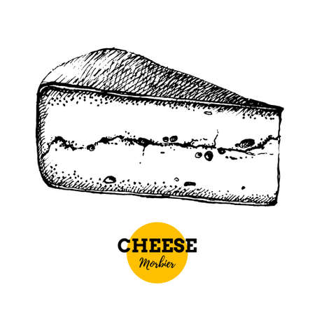 Hand drawn sketch cheese morbier background. Vector illustration of natural milk foods