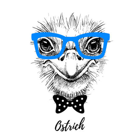 Hand drawn sketch ostrich hipster head illustration. Isolated cute trendy portrait on white background