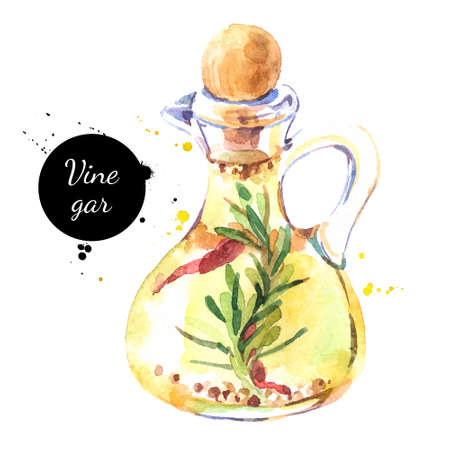 Watercolor hand drawn vinegar bottle illustration. Vector painted sketch isolated on white background. Superfoods poster Vecteurs