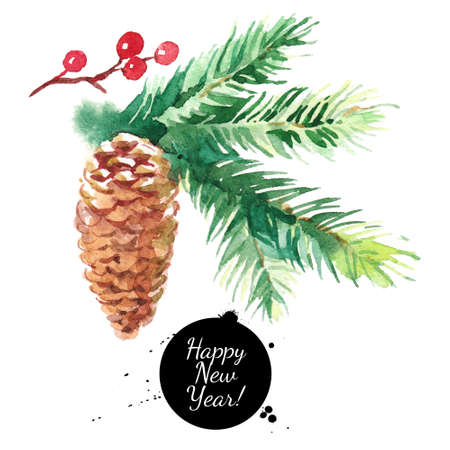 Watercolor fir tree branch with cone. Hand drawn isolated illustration
