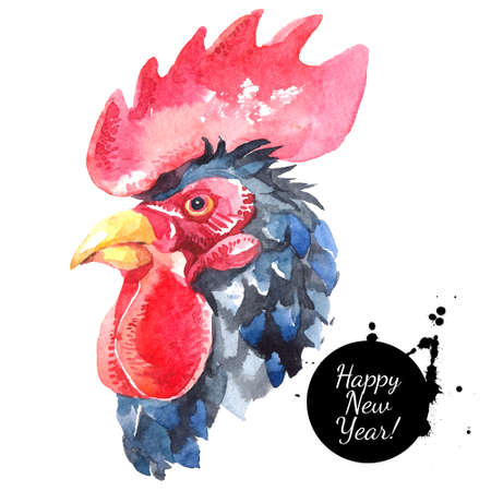 Watercolor hand drawn rooster head illustration. Painted sketch chicken portrait isolated on white background. Symbol of new year 2017 Banco de Imagens