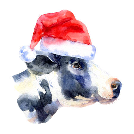Watercolor Christmas cow portrait illustration. Painted isolated cow with santa hat on white background Banco de Imagens