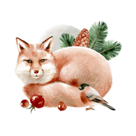 Watercolor winter forest wild animal. Fox. Bullfinch. Painted isolated hand drawn illustration.