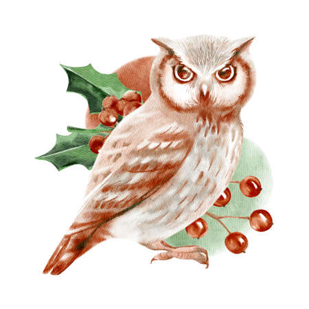 Watercolor winter forest wild animal bird. Owl. Painted isolated hand drawn illustration.