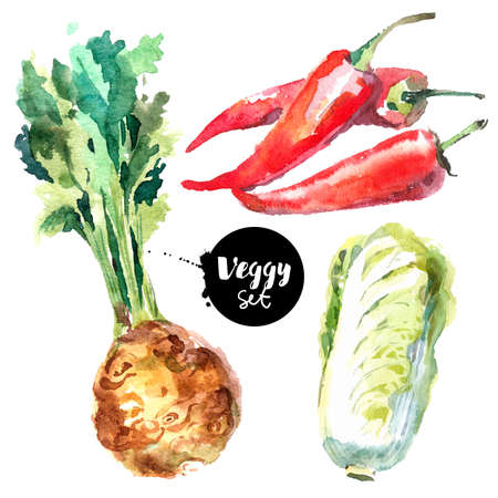 Watercolor vegetables set. Painted isolated natural organic fresh eco food illustration on white background. Veggies design of celery, chinese cabbage, chili Banco de Imagens