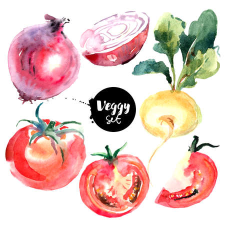 Watercolor vegetables set. Painted isolated natural organic fresh eco food illustration on white background. Veggies design of tomato, red onion, turnip Banco de Imagens