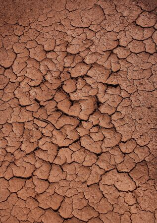 dry soil texture background photo