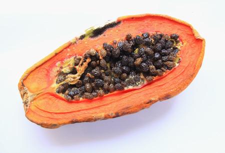 rotten: papaya rotten have fungus