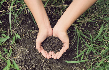 Vintage Style,Soil- handful,female hands, humus soil Imagens