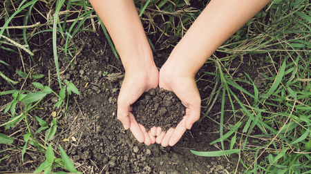 humus soil: Vintage Style,Soil- handful,female hands, humus soil Stock Photo