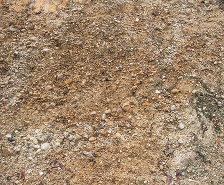 dirt background: Detail of surface texture with small pebble rock on dirty ground. Stock Photo