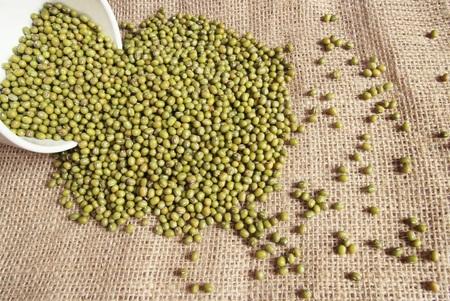 green bean: Green bean or mung bean in a white bowl.