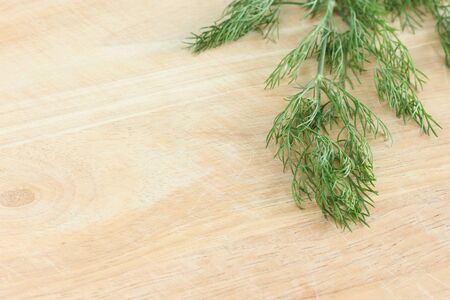 green herbs: Dill on wood table