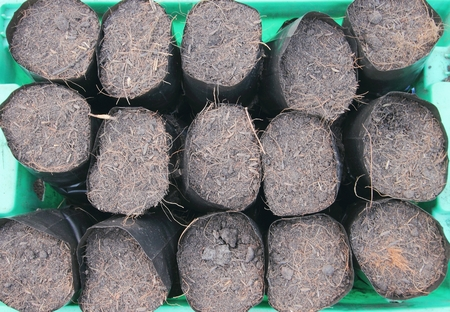 turf pile: soil with dry grass in bags for agriculture Stock Photo