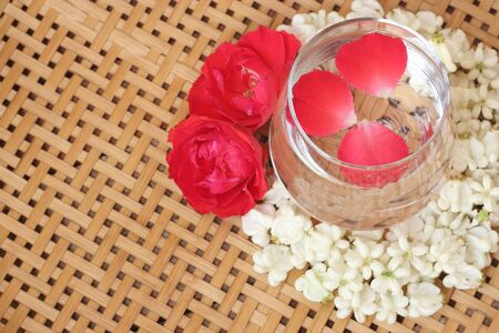 gigantea: Calotropis gigantea with rose flower , Water Festival or Songkran concept