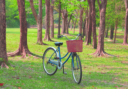 old time: Vintage bicycle waiting near tree, in vintage retro tone