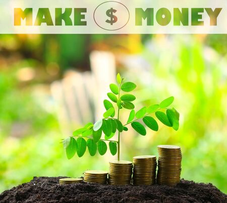 make money: money coins,Business investment growth concept , make money concept