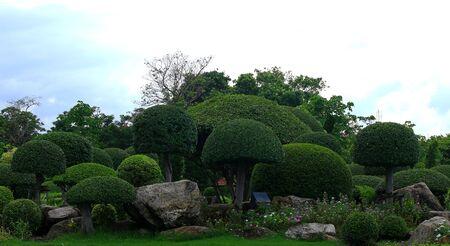 garish: Beautiful flower garden in the park Stock Photo