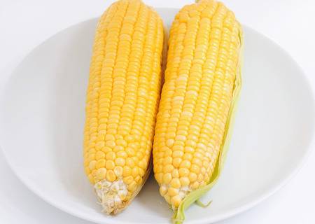 Fresh corn on white background