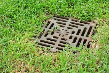 iron grate of water drain in grass garden field