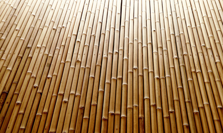 natural bamboo fence texture background