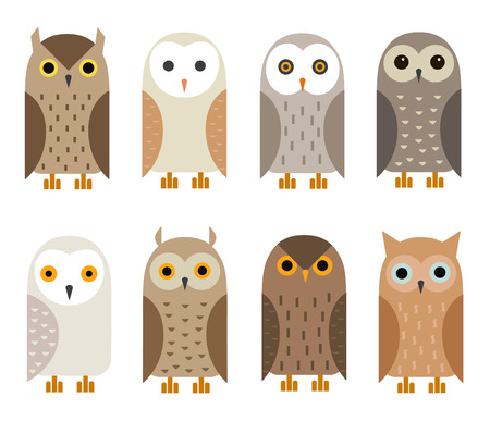 tawny: Vector owl characters set.  Owl icons. Barn owl, snowy owl, burrowing owl, West American owl, eagle owl, long-eared owl, tawny owl, the North American owl.