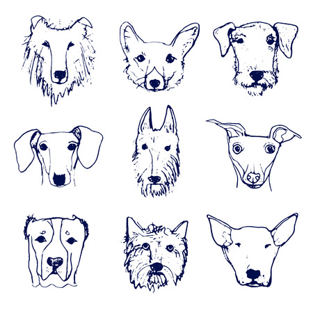 labrador doodle: Set of Hand drawn Dogs Heads. Dog Breeds. Hand drawn Sketch made in Vector. Isolated.