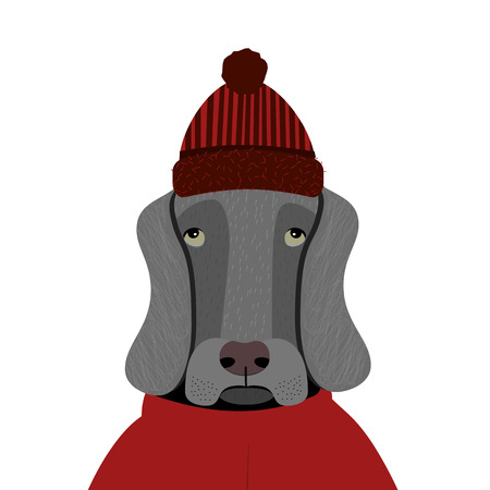 sad dog: Cartoon Sad Dog in red Hat and cloak. Vector illustration. Illustration
