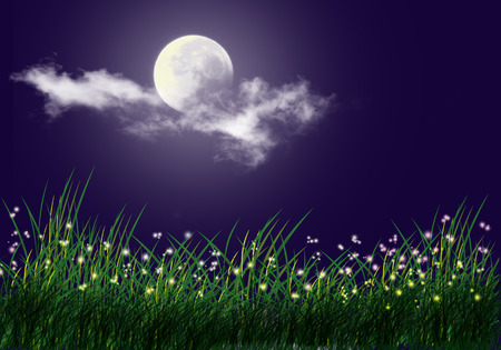 Firefly and grass full moon background photo