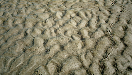 puckered: puckered texture of sand beach