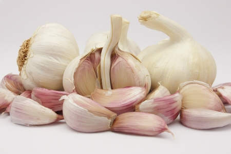 head of garlic with some teeth loose on a white background photo