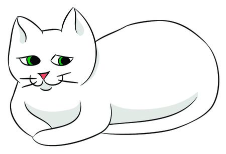 Nice white cat.