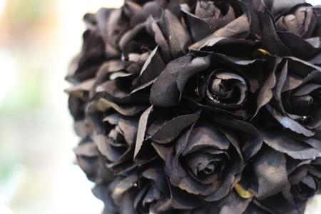 Black Rose photo