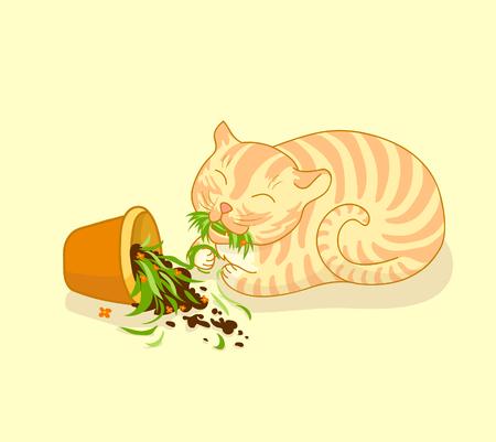 ginger cat: Vector illustration of happy ginger cat who broke flower pot and eats the grass. Art for childrens t-shirt or bag design. Vector design element Illustration