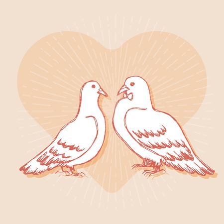 honeymoon: Couple of pigeons. Design element for wedding greeting card, valentines day invitation, honeymoon postcard. Vintage style, hand drawn pen and ink. Romantic retro bright color Illustration