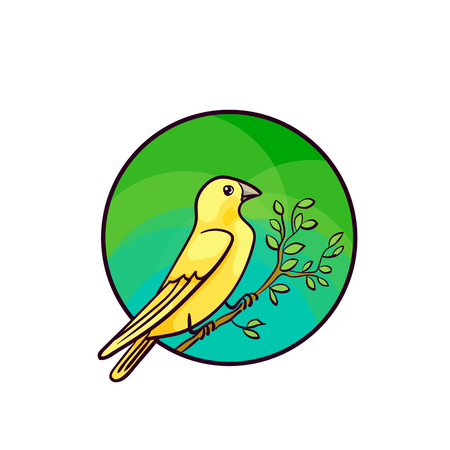 wild canary: Canary bird. Animal art, cute cartoon style, vector hand drawn illustration. Suitable for pet shop or zoo ads, label design or animal food package element