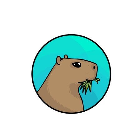 적합: Capybara, the largest rodent in the world. Animal art, cute cartoon style, hand drawn illustration. Suitable for pet shop or zoo ads, label design or animal food package element 스톡 콘텐츠