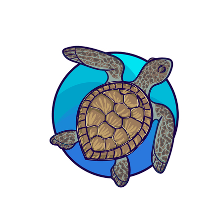 threatened: Animal art, cute cartoon style, hand drawn vector illustration. Green sea turtle living in Pacific ocean, cartoon style