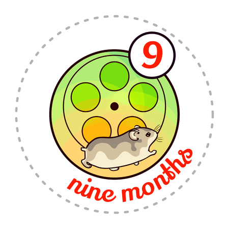 nine year old: Monthly baby sticker. Cute cartoon animal illustration for little boy or girl. First year, nine months. Djungarian hamster in hamster wheel Illustration