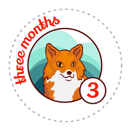 Monthly baby sticker. Cute cartoon animal illustration for little boy or girl. First year, three months. Red fox
