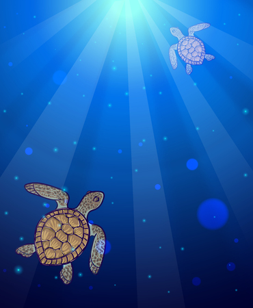 Underwater sea scene with two marine turtles and sun light shining through water surface. Ocean water background
