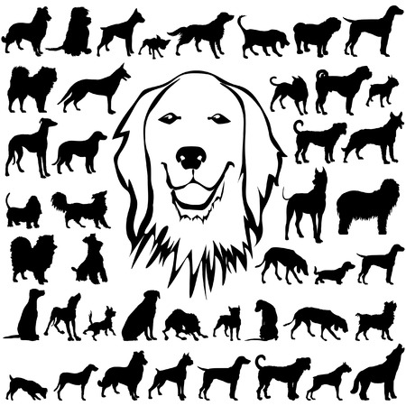 pointer dog: 44 pieces of dog silhouettes. Illustration