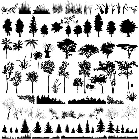 Detailed vectoral tree, leaf, branch and grass silhouettes. Vector