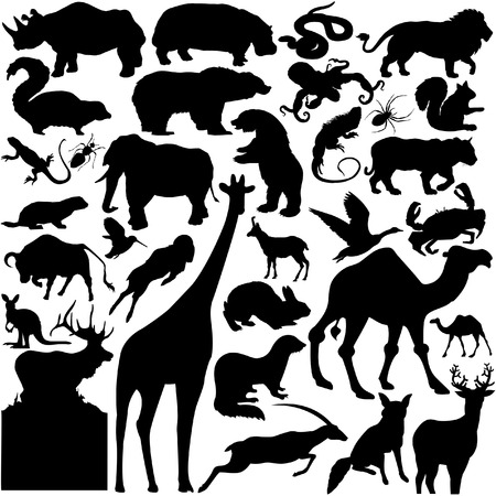 30 pieces of detailed vectoral wild animal silhouettes Illustration