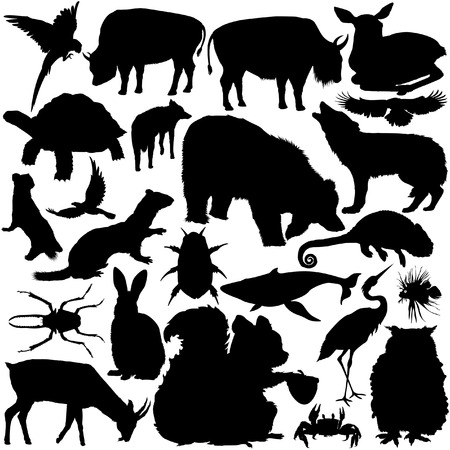dung: 23 pieces of detailed vectoral wild animal silhouettes