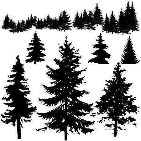 Las siluetas de árboles de pino vectorial
