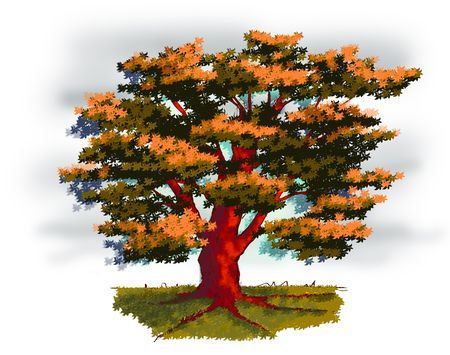 rooted: Illustration of a old tree in autumn Stock Photo